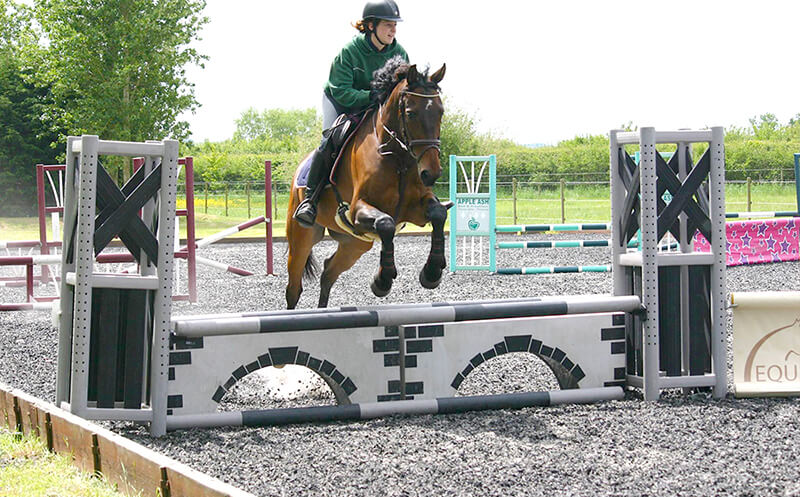 riding arena for hire with show jumps